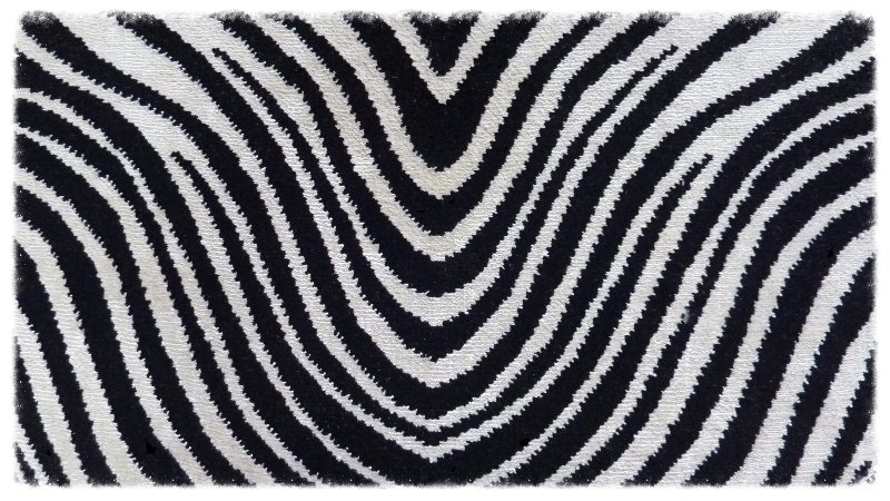 Animal Glint Zebra