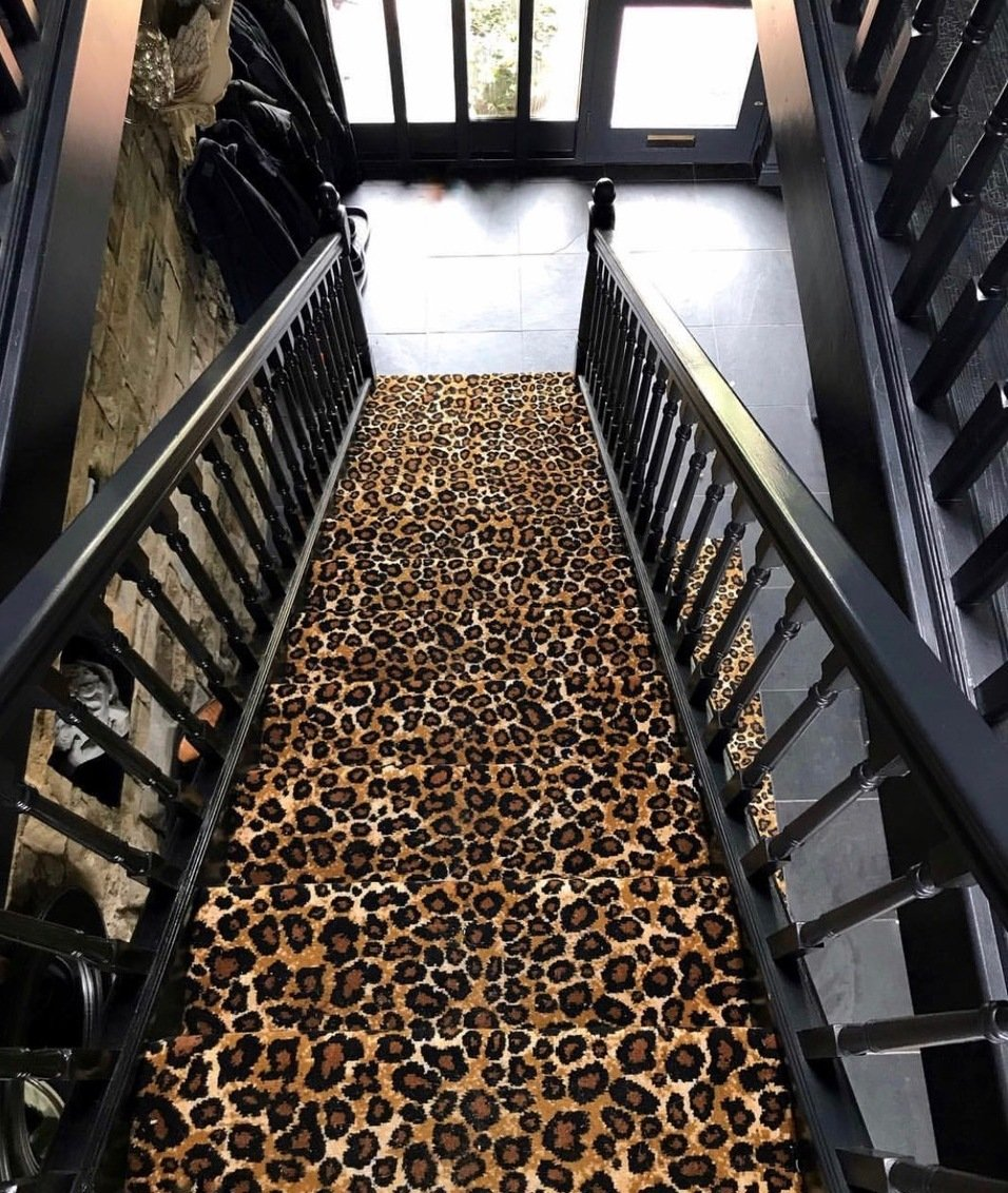 Zebra Rug Los Angeles: Would An Animal Print Floor Covering Suit Your Home In