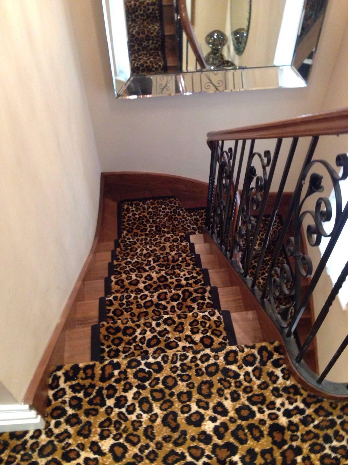 Zoo 2 Leopard