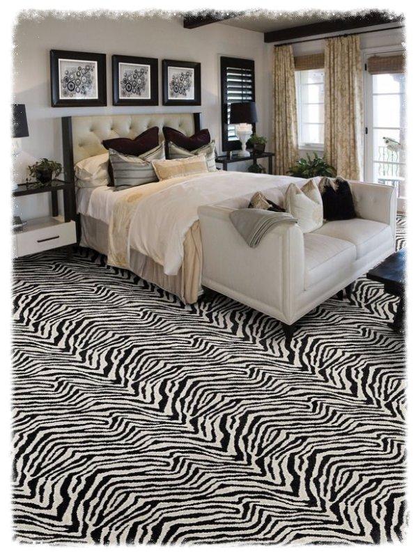 Masland Plain Zebra