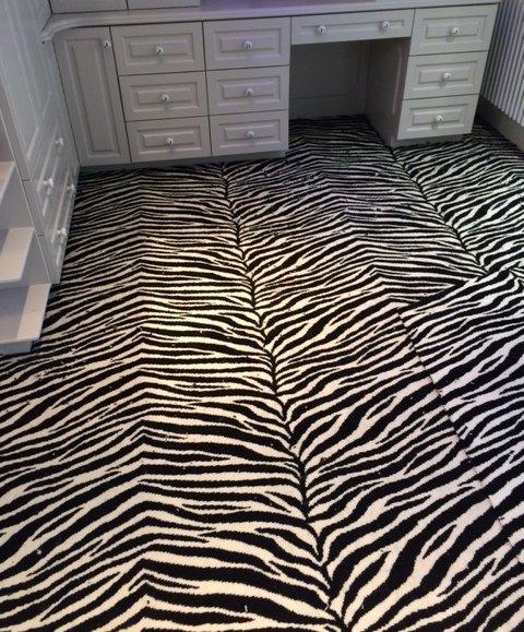 Wild Thing Zebra