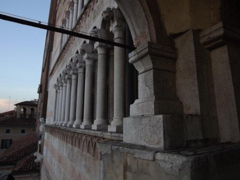 lavori birds control Duomo di Cremona