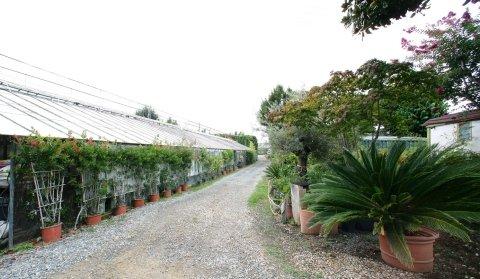 Azienda Agricola Merengone