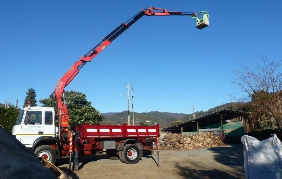 Piattaforme aeree per potatura alberi
