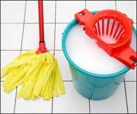 House move cleaning - Kent - NessyJems Ltd - Mop and bucke