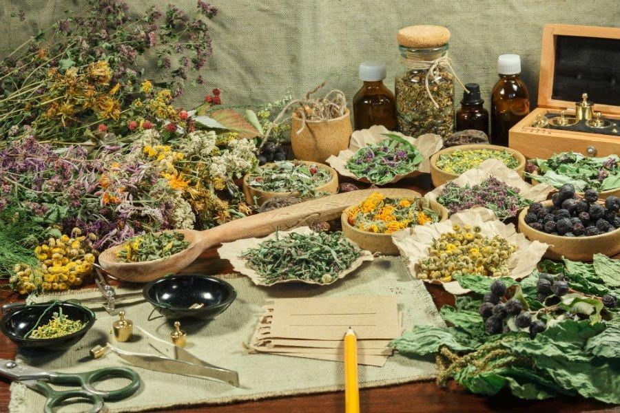 tavolo di legno con fiori ed erbe essiccati per infusi