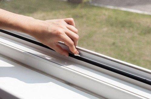 zanzariere in una finestra