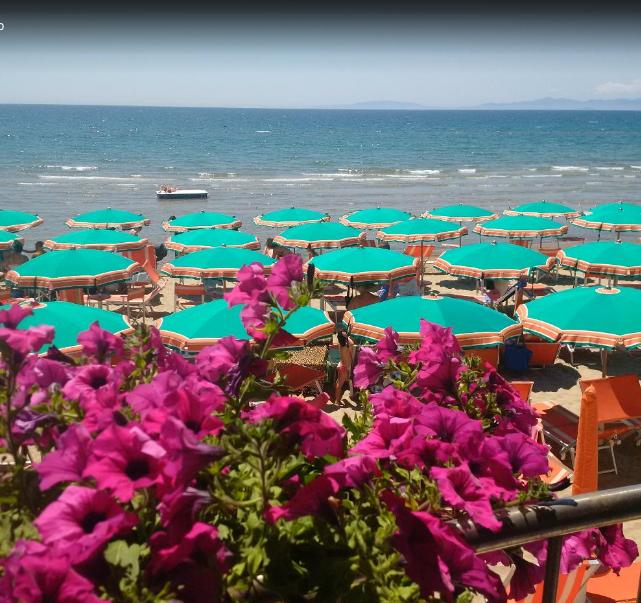Hotel Orchidea Spiaggia sul Mare