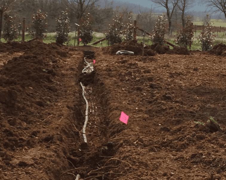 scavo per impianto irrigazione