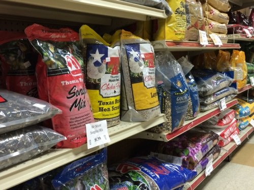 Food supply for pet in Clifton, TX