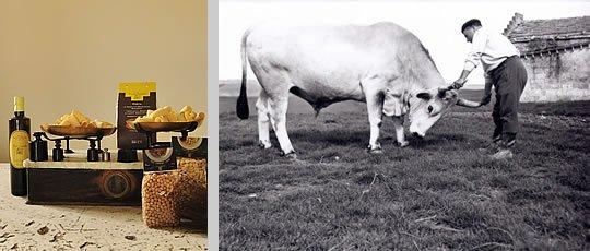 I latticini di Gioia del Colle a Zibido San Giacomo