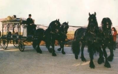 carrozze per tarsporti funebri Torino
