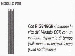 Rigenerazione moduli Egr