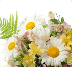 mazzo fiori freschi