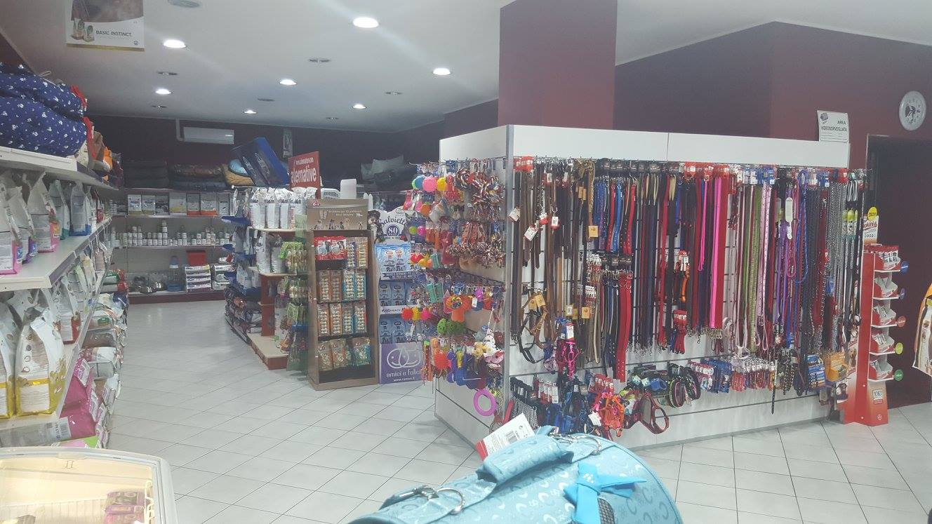Accessori e guinzagli all'interno del petshop
