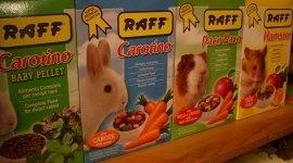 alimenti per roditori