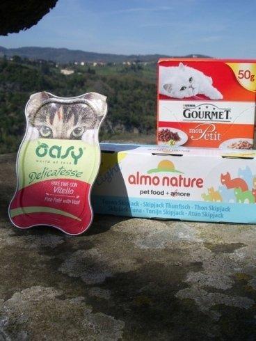 alimenti umidi per gatti