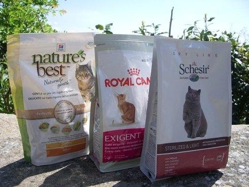 assortimento alimenti secco per gatti