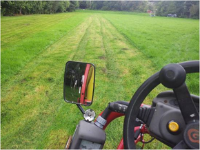 Lawn cutting - Welshpool, Powys - Leighton Garden Services - Gardener