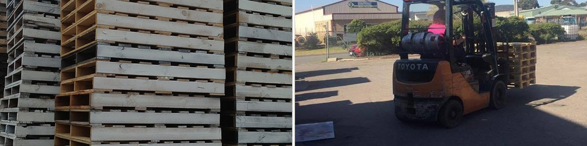 Used Pallets | Perth | Pallet Pals