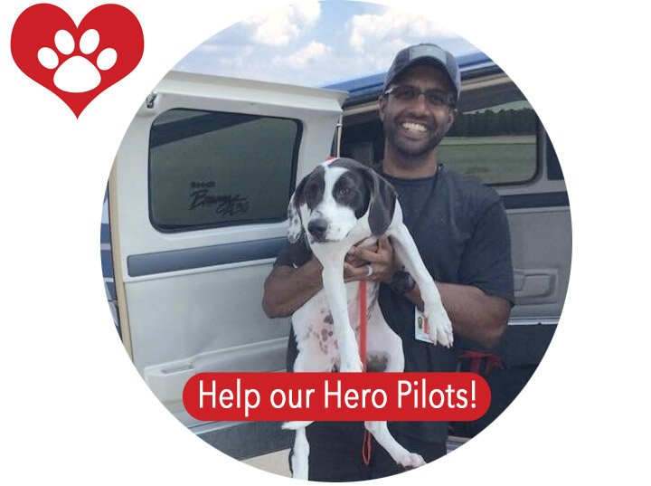 Help our hero pilots.
