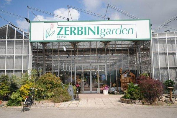 piante da giardino, fiori freschi, progettazione giardini