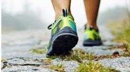 attivita fisica e prevenzione