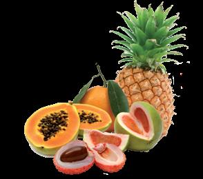 ORTOPAOLO Frutta Esotica