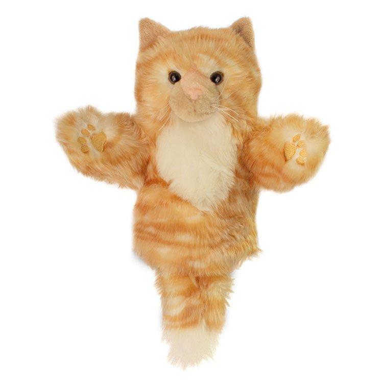 furry ginger cat