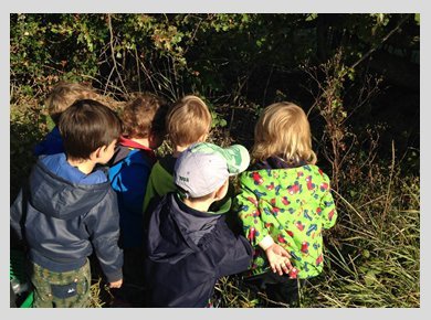 A group of children exploring a wooded area