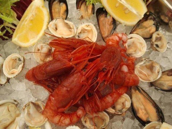 ristorante di pesce castro