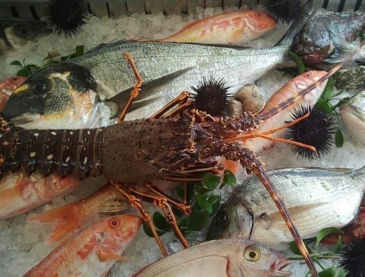 piatti di pesce castro