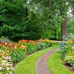 Servizi giardini e terrazzi
