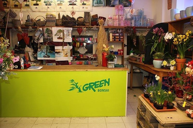 Green - Negozio