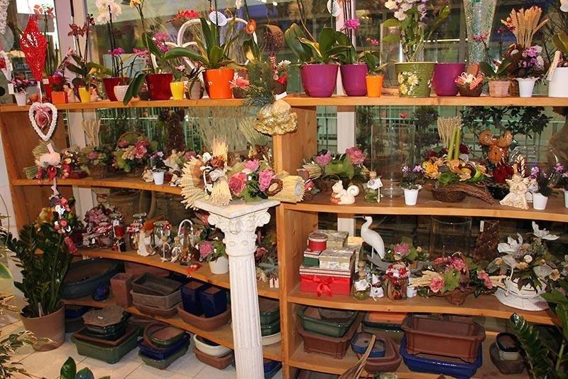 accessori per piante