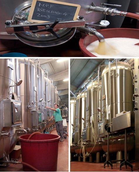 macchianri per la fermentazione dell'uva
