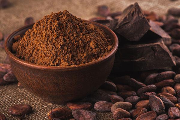 Una ciotola con del cioccolato nero in polvere e accanto dei chicchi di cacao