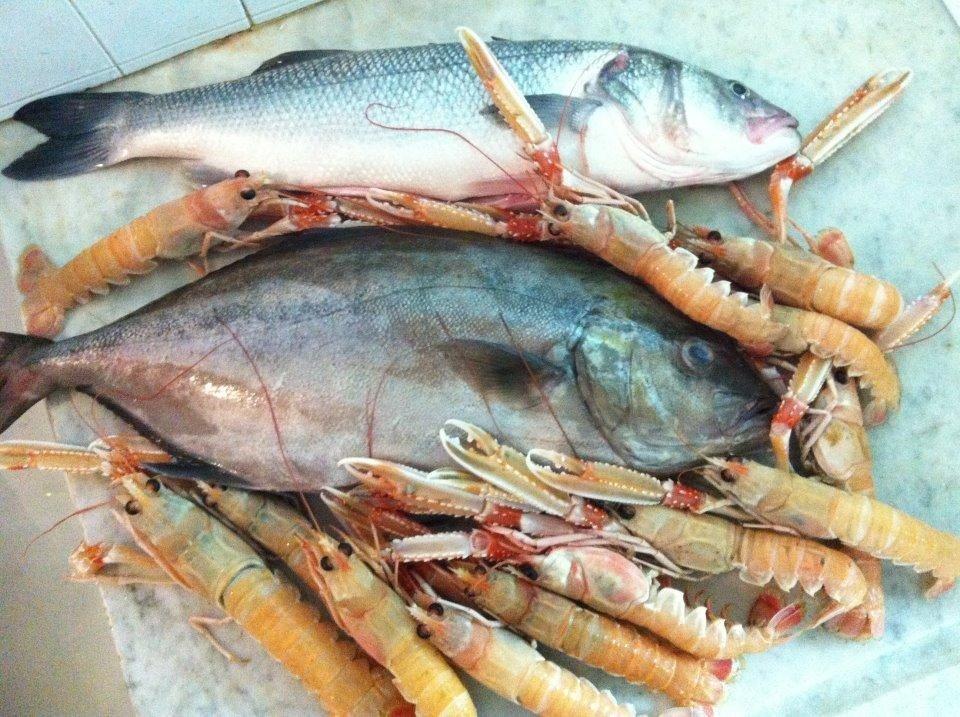 pescato giornaliero