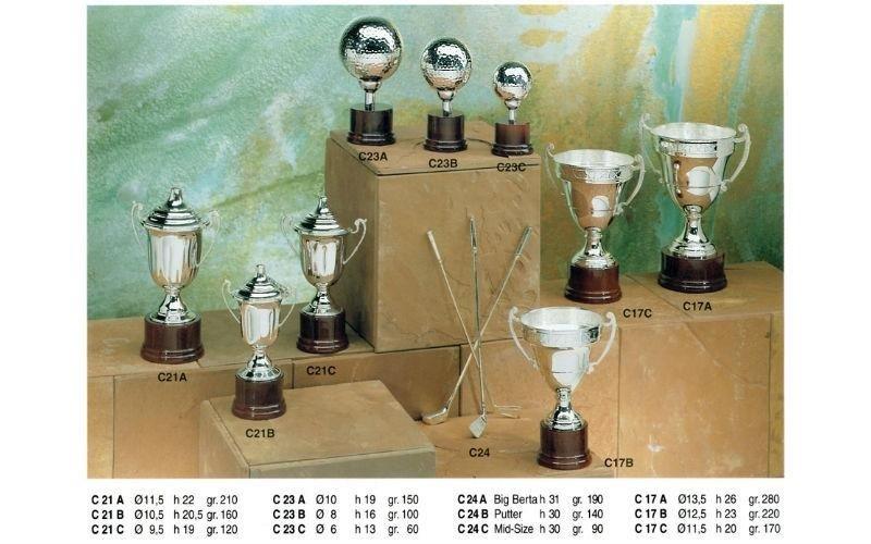 Premi argento