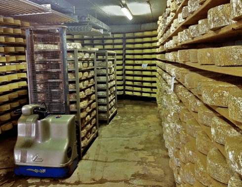 stagionatura formaggi