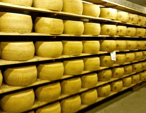 formaggi stagioanti