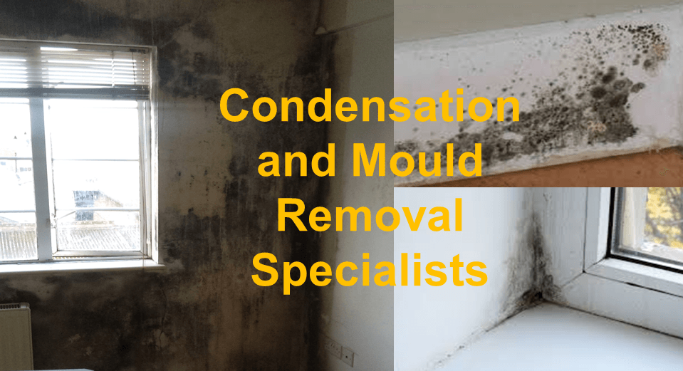 Condensation Control And Mould Removal Specialists