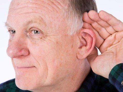 centro acustico parma