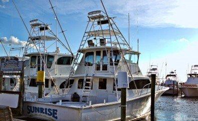 Fishing Destin, Charter Boat Sunrise, Charter Boat First Light, Charter Boat Outta Line, Deep Sea Fishing, Destin Harbor, Fleet, Marina