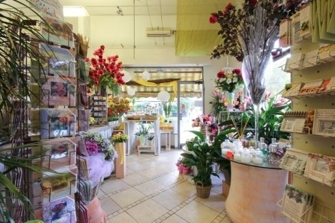 negozio di piante e fiori