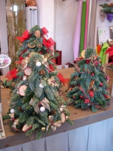 alberini di Natale a partire da 35 €