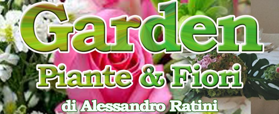 Vendita piante, vendita fiori, Rieti