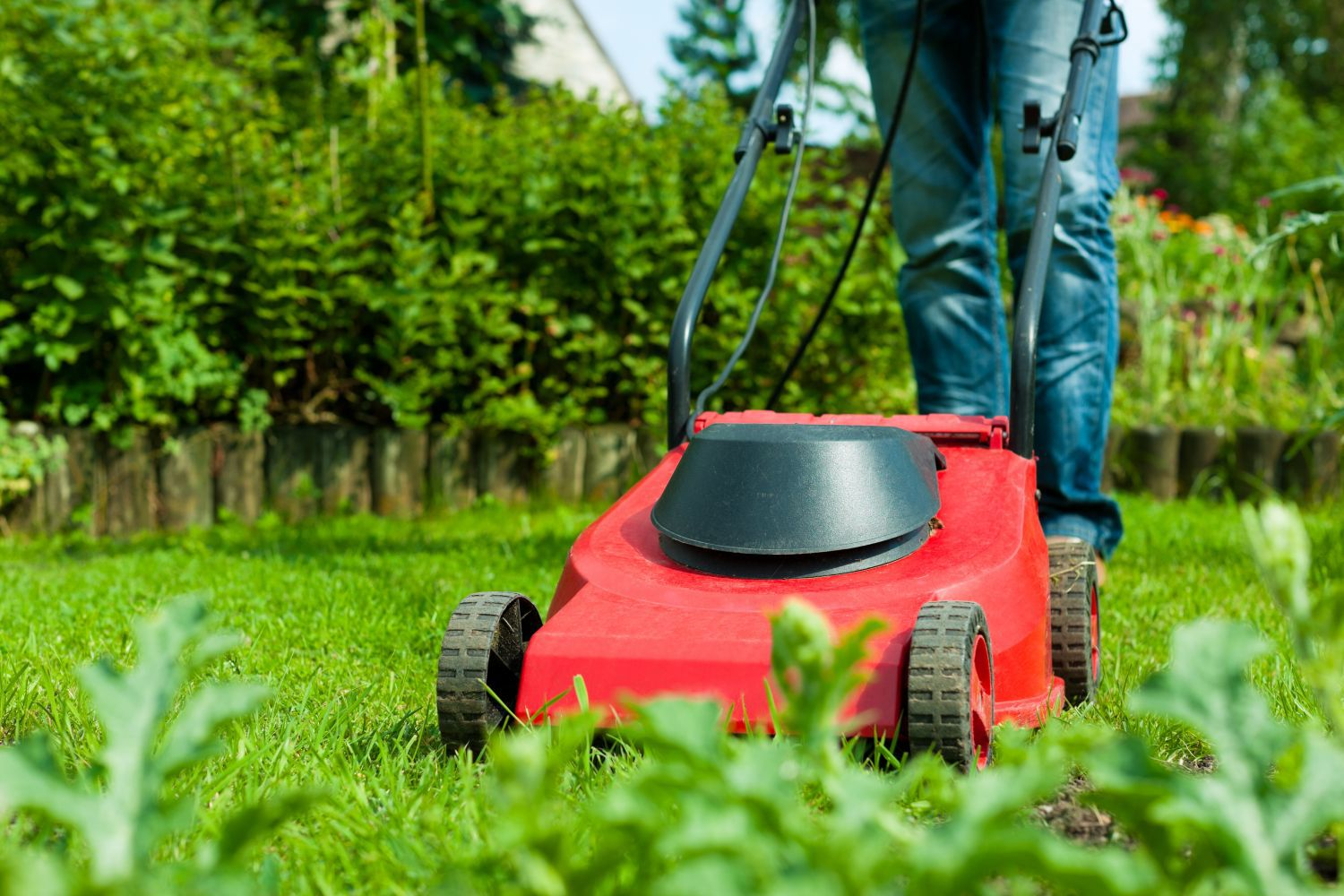 Person tending to their garden with a mower from our lawn mower sales in Green Island