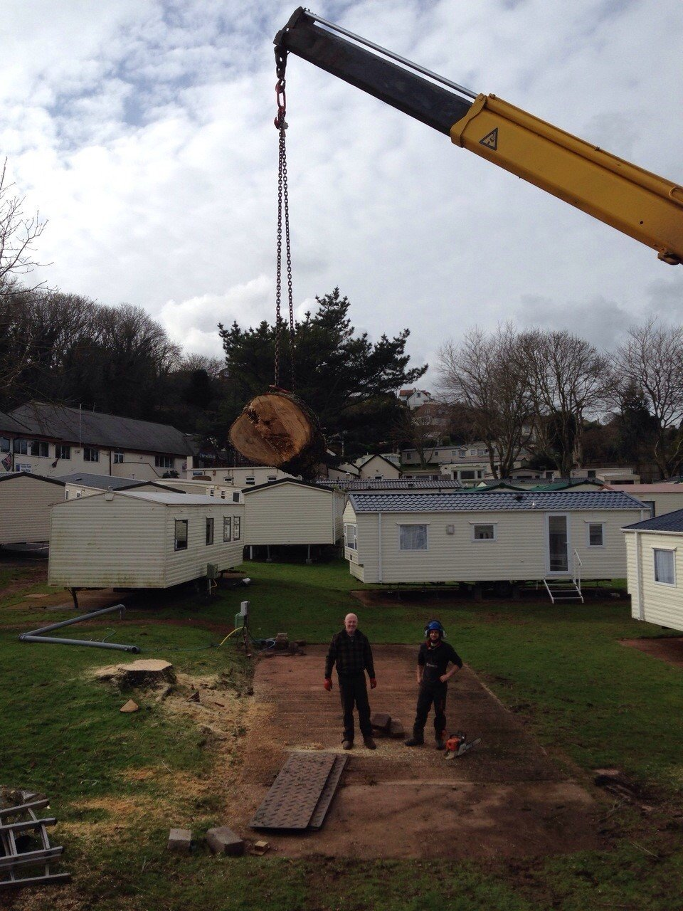 logs being lifted