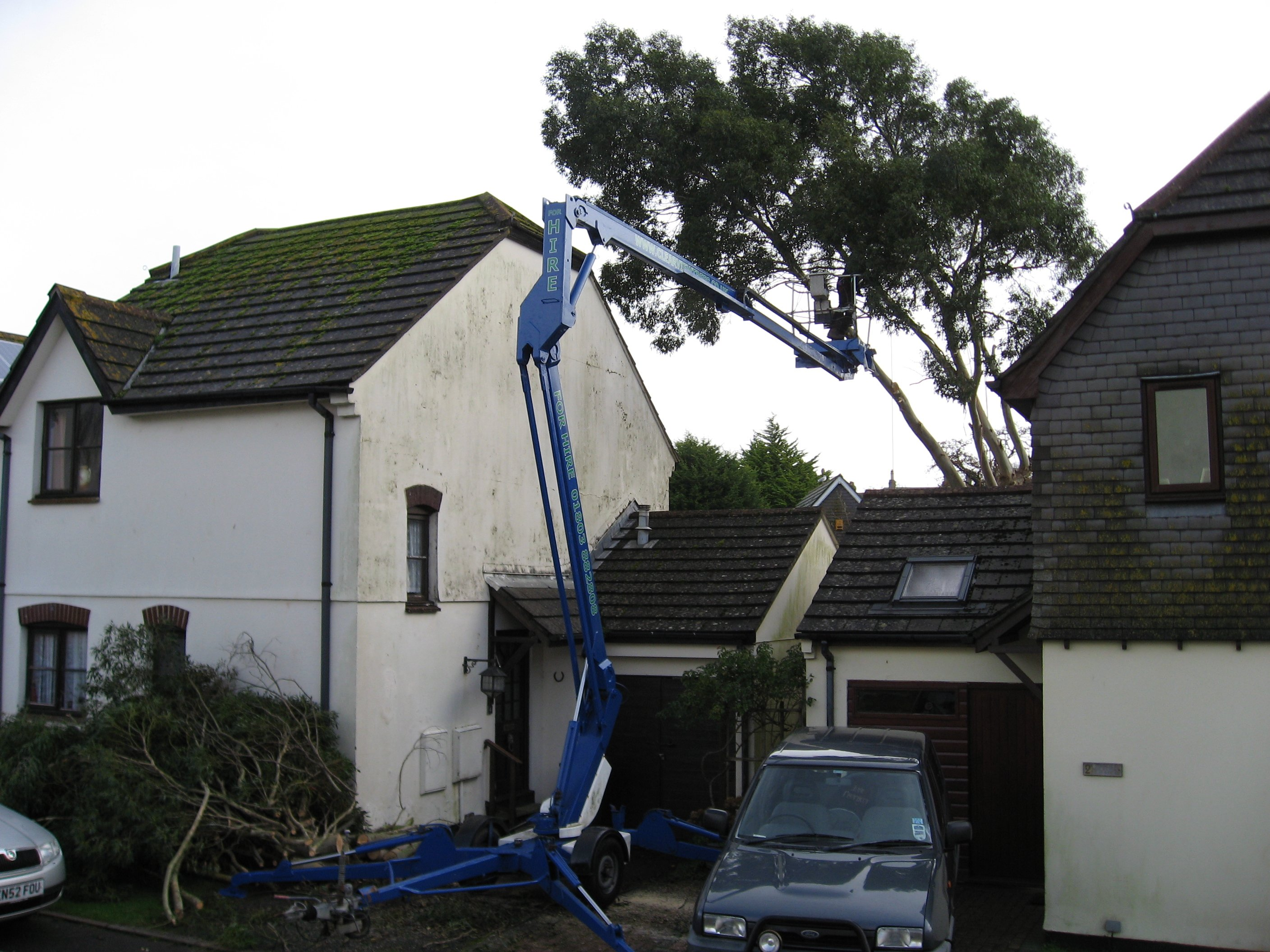 tree felling equipment